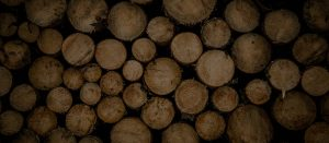 sydney wood industries SWI Timber suppliers